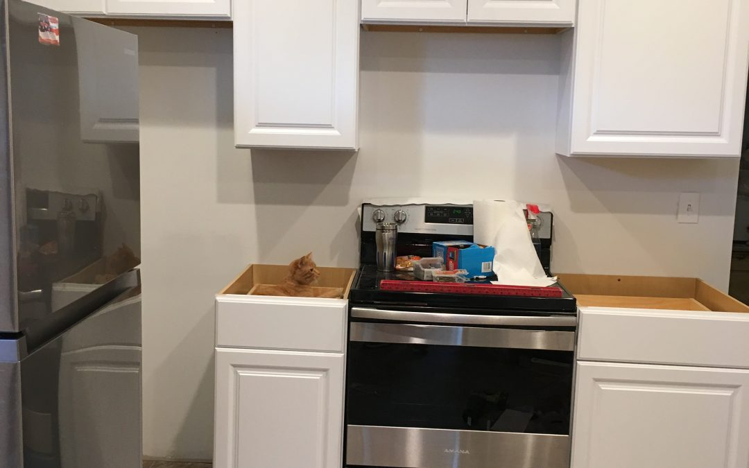 We Need Kitchen Cabinets!